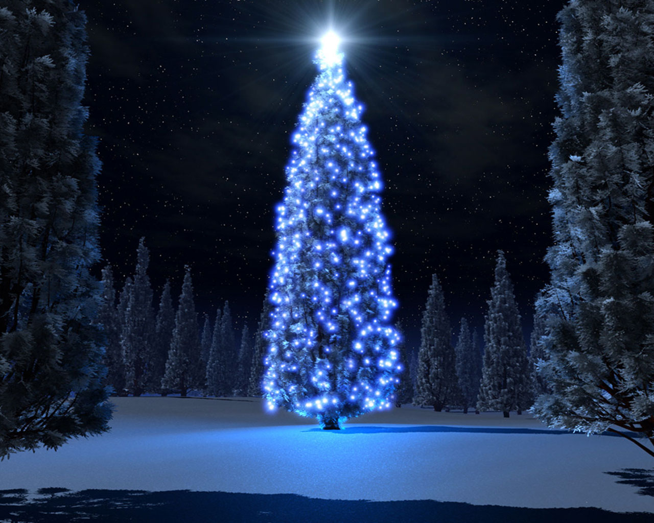 Download wallpaper Christmas tree in the forest: 1213