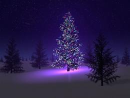 Christmas Tree Desktop Wallpapers 342