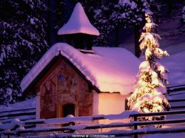 Snowy Christmas Tree Desktop Wallpaper 478