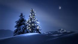 Christmas Tree Wallpapers | Desktop Wallpapers 727