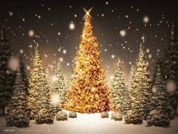 net wallpapers Holidays Christmas christmas tree desktop wallpaper 1398
