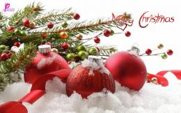 Christmas Wishes Messages for Cards with Greetings Wallpapers 696