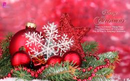 Christmas Wishes Quote Card Happy Holidays Wishes New Year Greetings 923