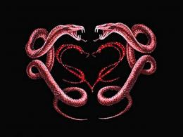The Best Serpents Wallpaper 1883