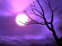 tags cool backgrounds purple ungu wallpaper pretty e a ibackgroundz 903
