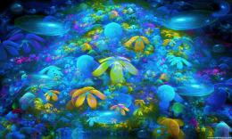 Coral Reef Wallpaper 830