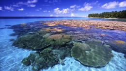 Great Barrier Reef, Queensland, Australia 142