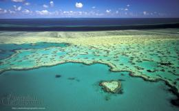 Heart Great Barrier Reef Wallpaper 1862
