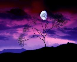 Full View and Download dark moon hd Wallpaper with resolution of 670