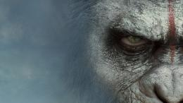 Dawn of the Planet of the Apes HD Wallpapers 553