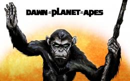 Wallpaper: Dawn of the Planet of the Apes 1700