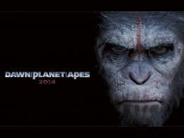 HD Wallpapers of Hollywood Movie Dawn of the Planet of the Apes 315