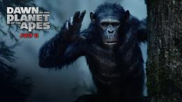 Other wallpapers of Dawn of the Planet of the Apes 554