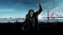 Planet of The Apes Caesar Wallpaper 1062