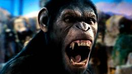 action drama sci Fi dawn planet apes monkey adventure65wallpaper 1850