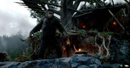 Dawn Of The Planet Of The Apes 2014 Wallpaper HD Download 07 345