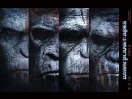 HD Wallpapers of Hollywood Movie Dawn of the Planet of the Apes 576