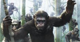 First Clip From 'Dawn Of The Planet Of The Apes' Features Caesar 1612