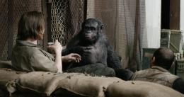 Dawn of the Planet of the Apes Hollywood Movie HD Wallpapers 496