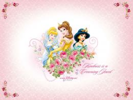 Disney Princess Disney Princess 524