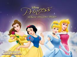 Disney Princess Wallpaper disney princess 6475195 1024 768 jpg 669