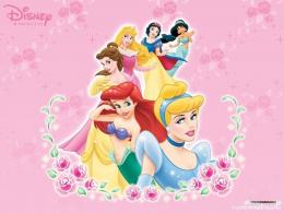 Disney Princess Wallpaper disney princess 5776017 1024 768 jpg 1882