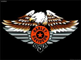 Harley Davidson Eagle Wallpaper 7500 Hd Wallpapers 1347