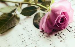 Elegant Music Rose Wallpaper 1021
