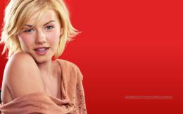 Elisha Cuthbert Hd Wallpapers Hollywood Actress 157