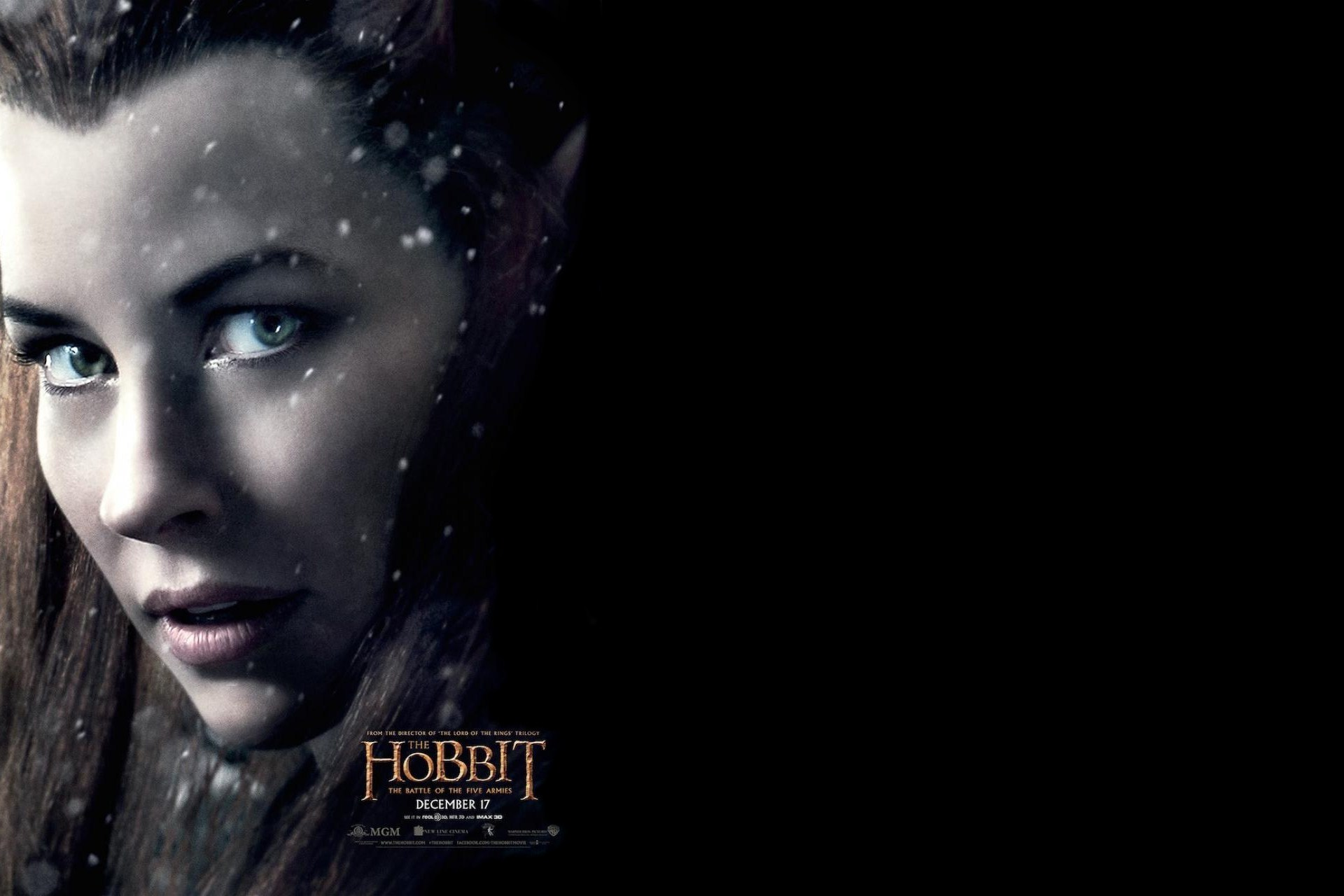 Evangeline Lilly In The Hobbit Battle of The Five Armies Wallpapers 1416