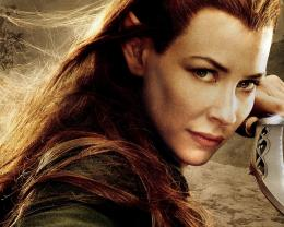 celebrity evangeline lilly in the hobbit move evangeline lilly actress 910