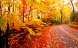 hd autumn wallpapers then click on the link Latest top hd autumn 1496