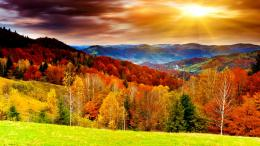 Scenic Fall HD Wallpapers 1691