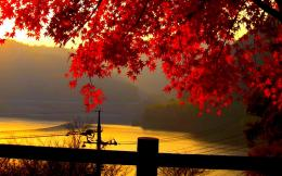Tagged with: Autumn Landscape Wallpaper Landscape Wallpaper 1180