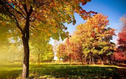 early fall hd desktop wallpaper download this wallpaper for free in hd 1165