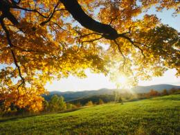 autumn hd wallpapers autumn hd wallpapers autumn hd wallpapers 184