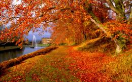 Autumn Hd wallpapers 1920