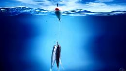 wallpapers desktop wallpaper resolution fishing upload 831