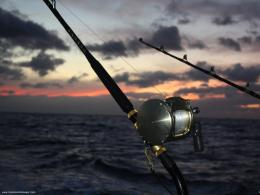 Fishing Wallpapers 1300