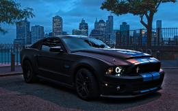 Ford Mustang Shelby GT 500 Black Wallpaper HD For Iphone Wallpaper 781