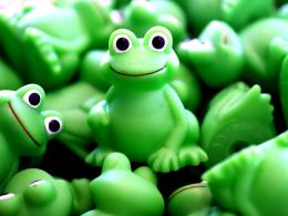 Frog green desktop background wallpapers 1113