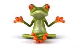 Free Frog Wallpaper For Desktop 1638