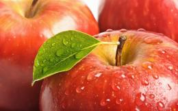 Apple Fruit HD Wallpapers 1229