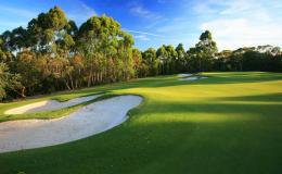 Golf HD Wallpapers 999