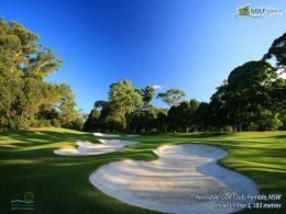 Golf Wallpaper Widescreen 2956 Hd Wallpapers 1142