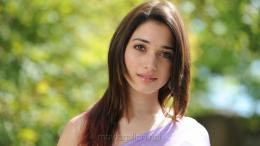 beautiful tamanna gorgeous wallpapers in saree 2388 jpg 1493