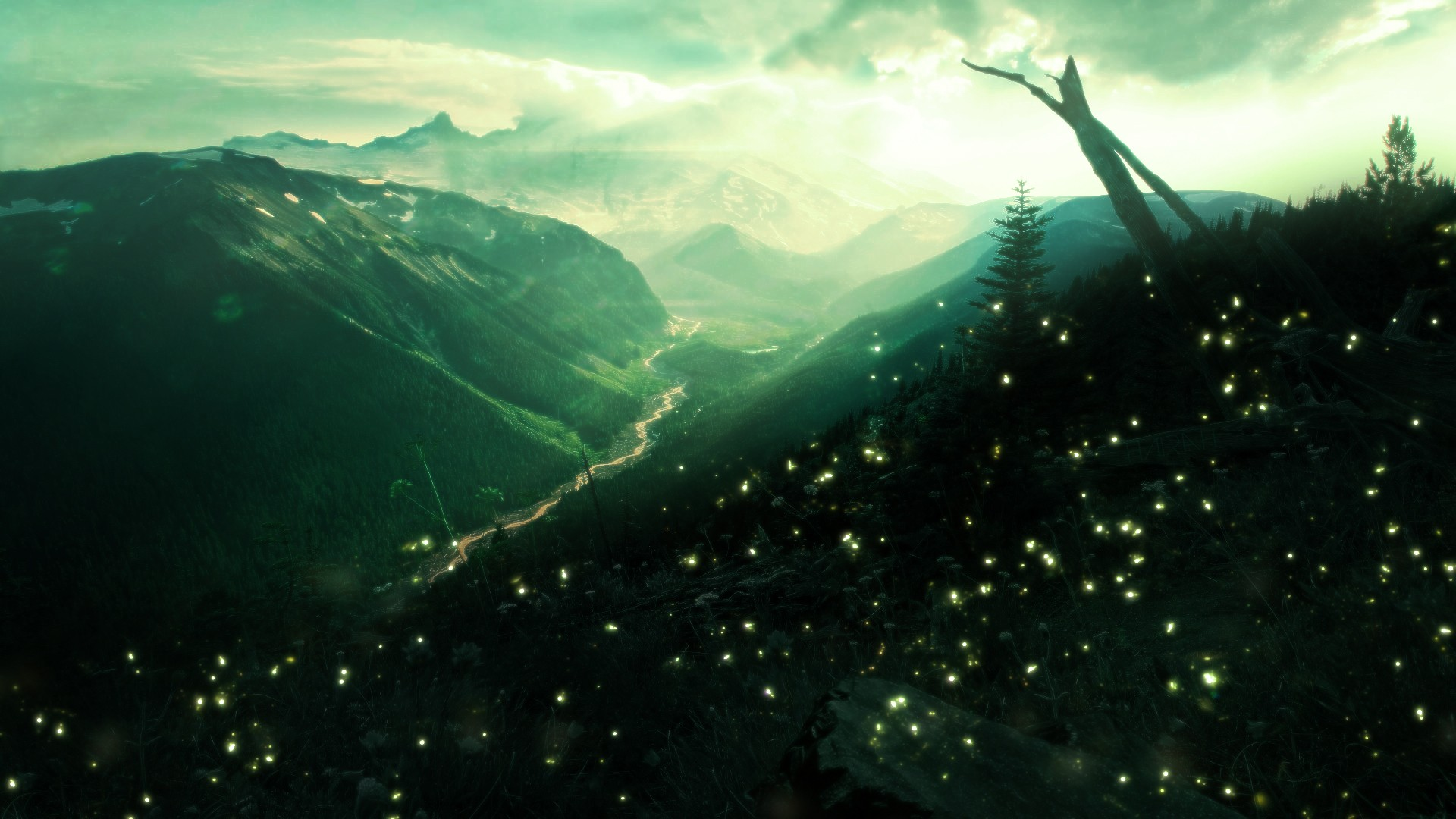 12 Fireflies HD Wallpapers 1295 :: Green Lacewing Insects ...