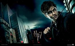 Harry Potter and the Deathly Hallows 663