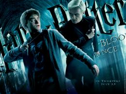 Harry Potter harry potter 1231