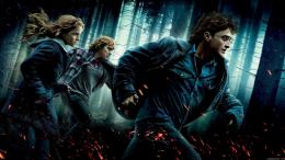 Harry Potter Hd Wallpaper with 1920x1080 Resolution 722